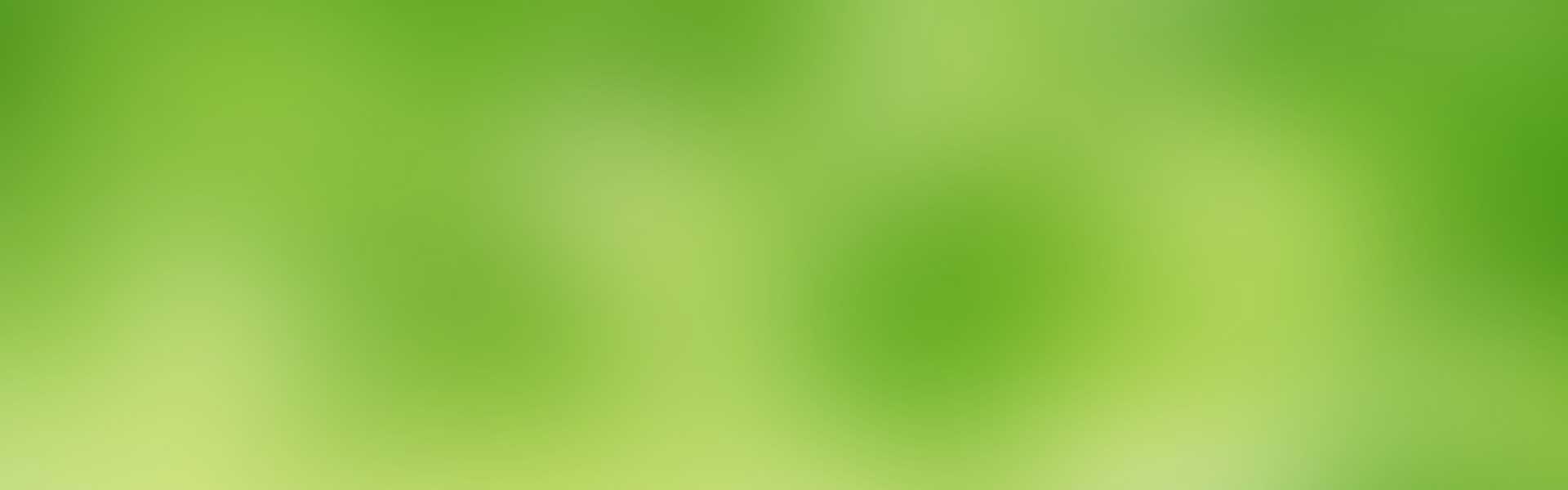 lime-banner