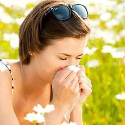 10-Quick-Steps-to-Hay-Fever-Relief