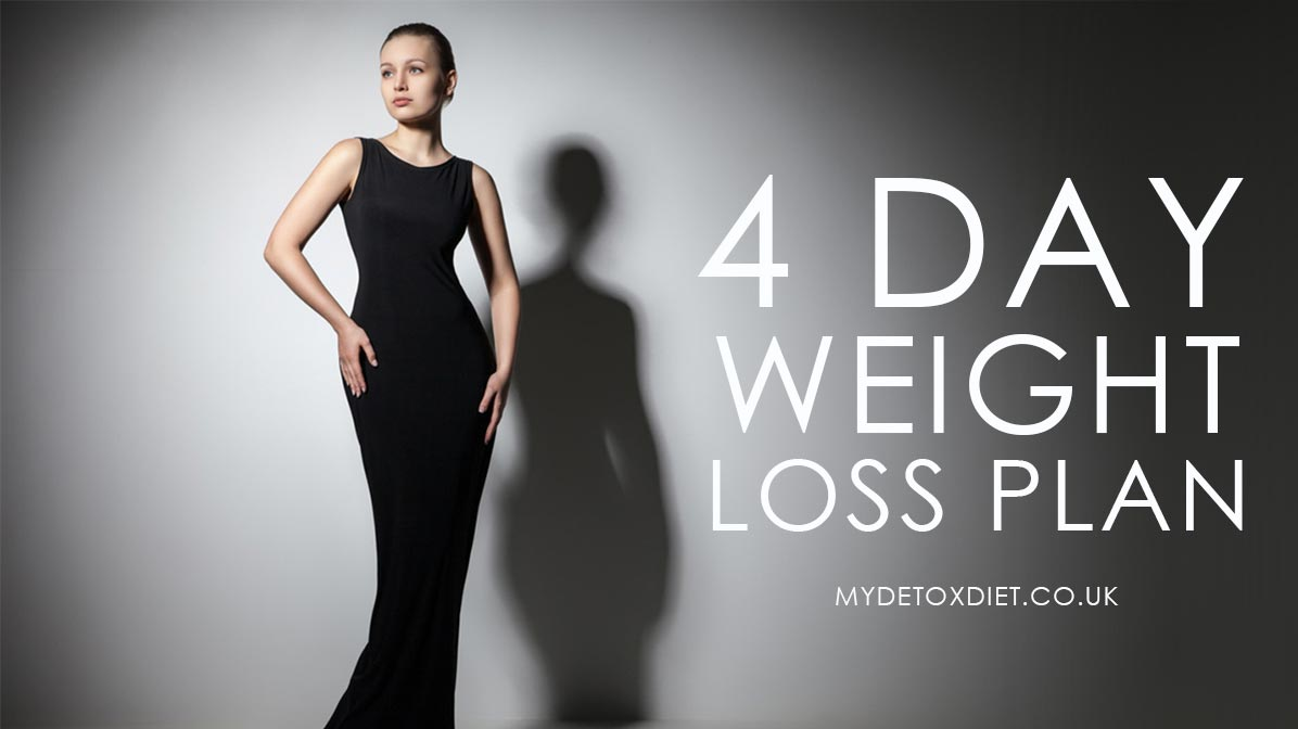 Weight loss plans – Review